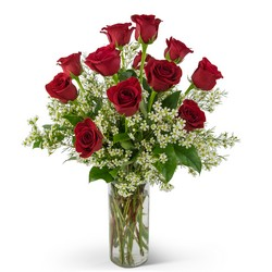 Swoon Over Me Dozen Red Roses