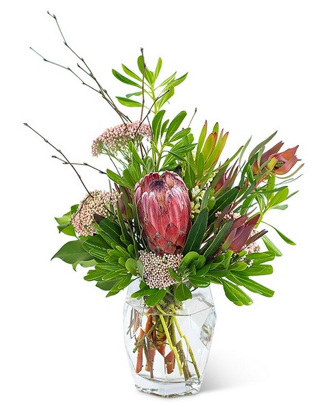 Posh Protea from Walker's Flower Shop in Huron, SD