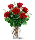 6 Red Roses from Walker's Flower Shop in Huron, SD